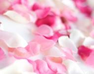 ziedlapiai 190x150 Žiedlapių kūgiai